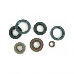 ATHENA OIL SEAL TC 13,8x24x5